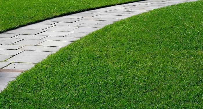 How to Repair Slate Tile Sidewalk?