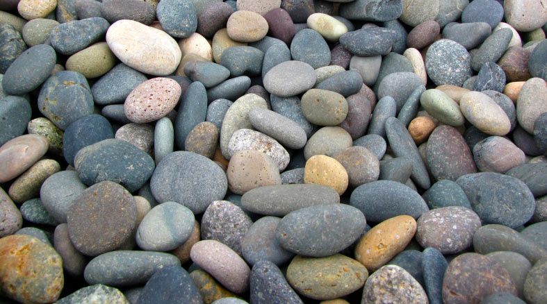 Beach pebbles as a landscaping rock