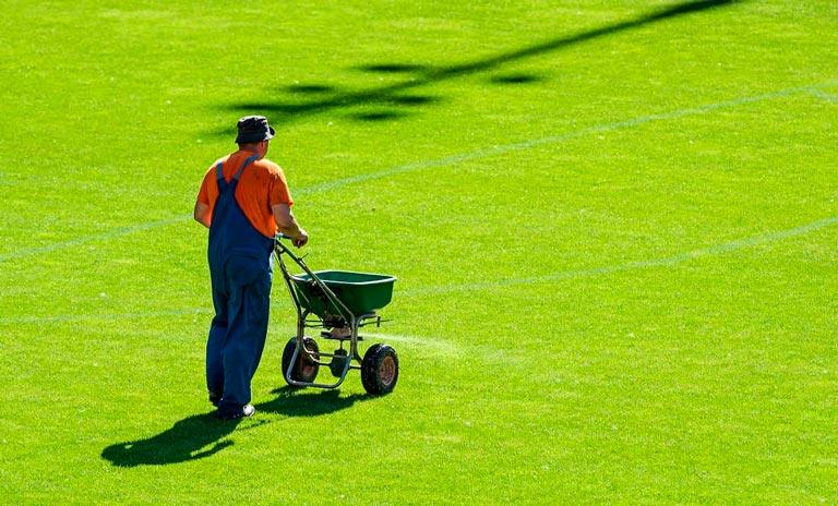 Fertilizer for Your Lawn