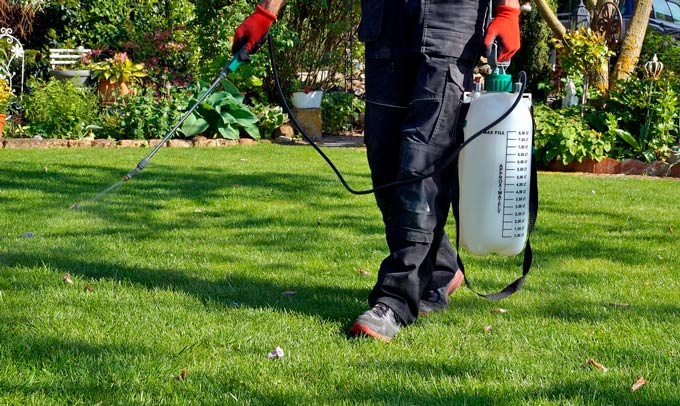 Types of Lawn Fertilizers