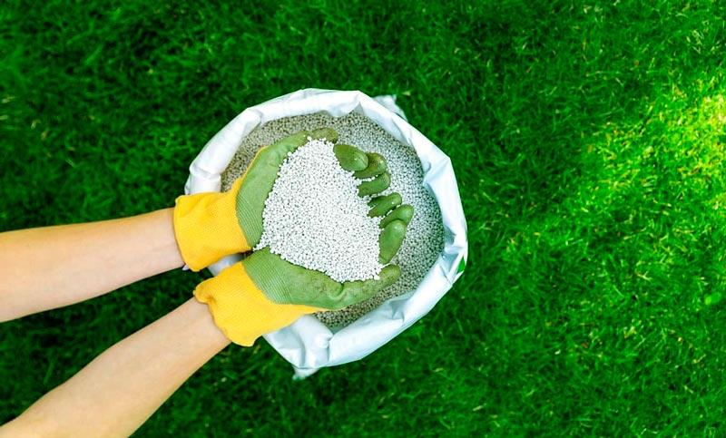 Lawn Care Fertilizer