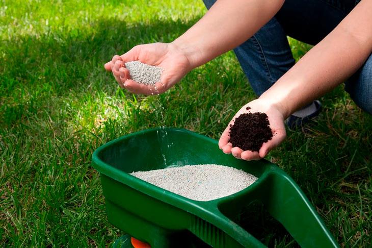 How to Choose Lawn Fertilizer