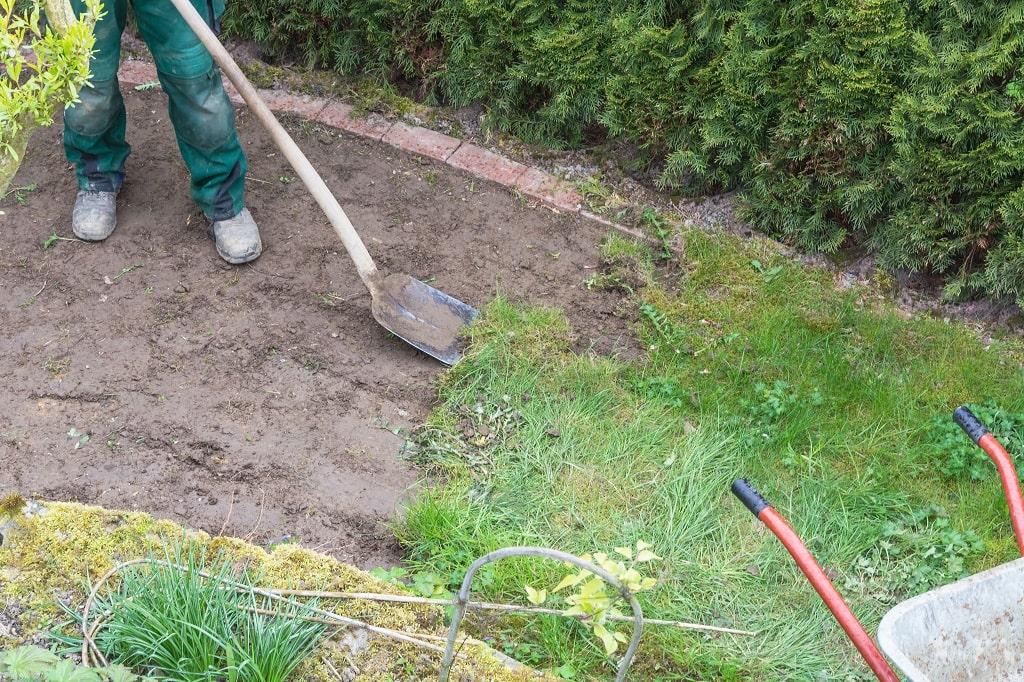 Herbicides to Kill grass