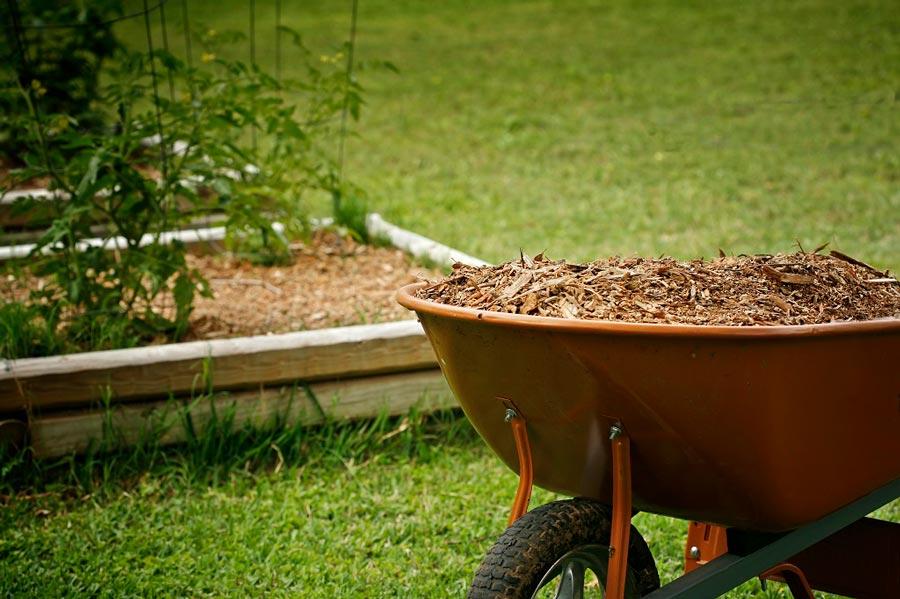 Garden Mulch Advantages and Disadvantages