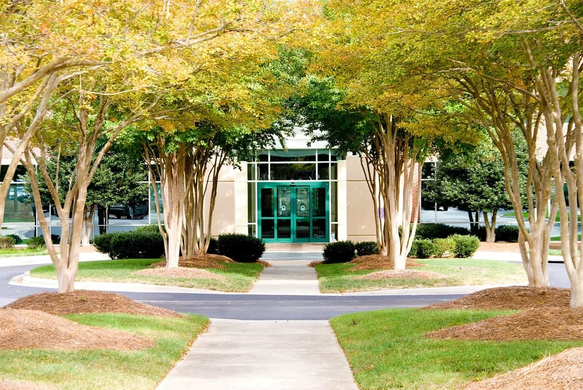 Commercial Landscaping as a Way to Improve Pedestrian Safety on Your Property