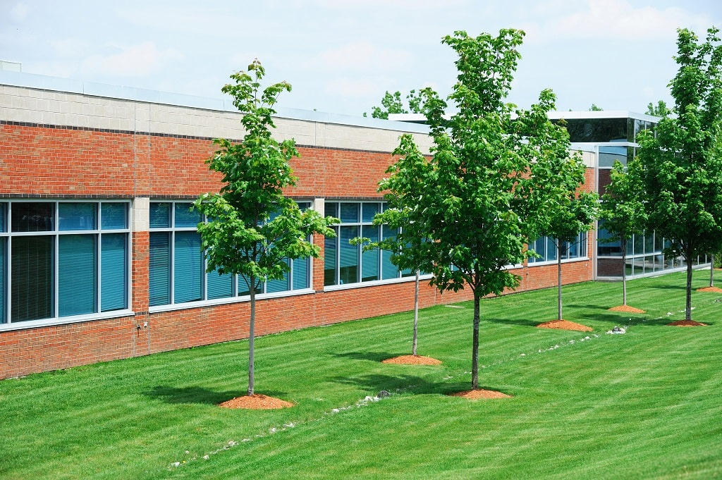 Trees Commercial Property
