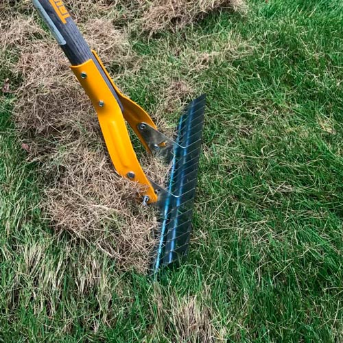 Specialized rake for dethatching a lawn