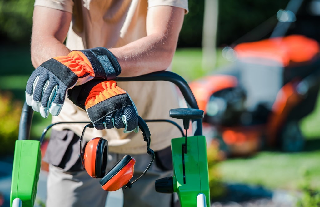 8 Questions to Ask Your Landscaping Contractor Before Hiring