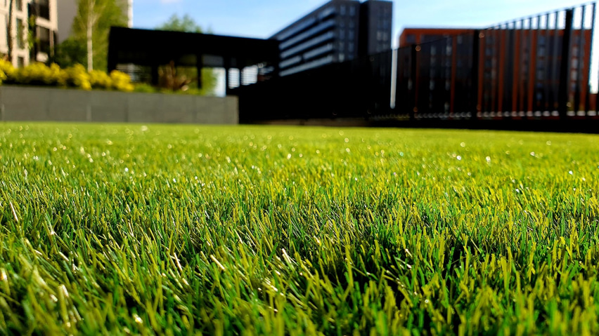 What Is a Lawn Aeration Service?