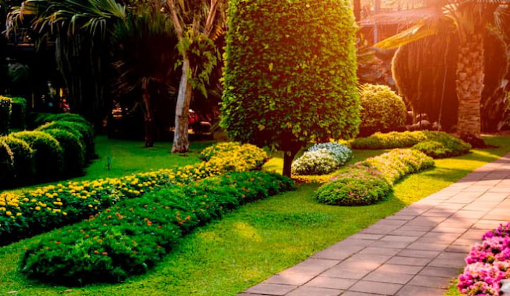 Landscape Renovation Services