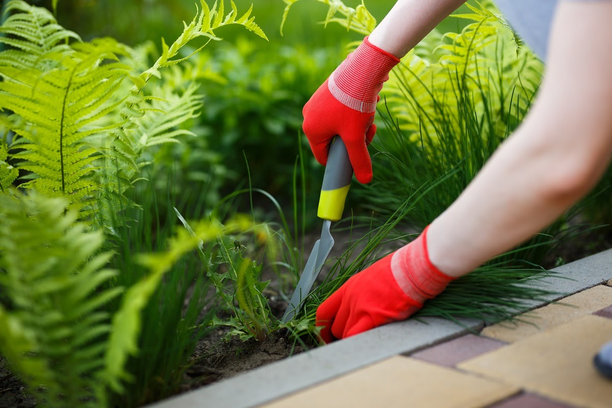 Madison businesses count on Earth Development for many reasons. Our comprehensive services mean you always have access to the landscaping you need, and our reliable local teams are available on a schedule that suits you. Businesses in Madison trust us because we: