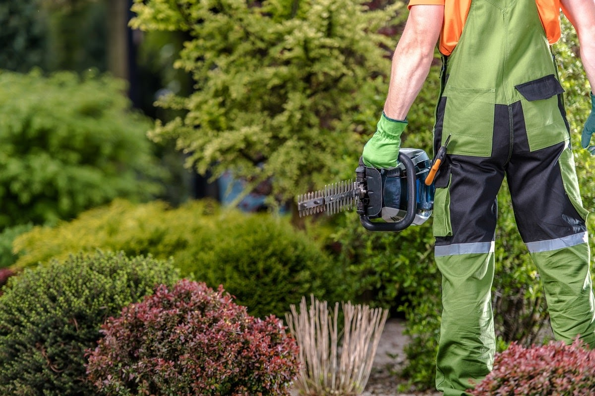 Clients keep on coming back to Earth Development because of the excellent quality of service we offer. From the range of landscaping options to our local and reliable team, everything we do is driven by a passion for delivering local Wausau businesses excellent services. Here's why businesses love us:
