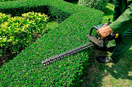 Everything our team of landscapers in Stevens Point does is driven by a desire to bring local businesses the most reliable service there is. We believe businesses should have easy and affordable access to commercial landscaping services, and that's why clients keep on coming back. Here's why Stevens Point businesses trust us:
