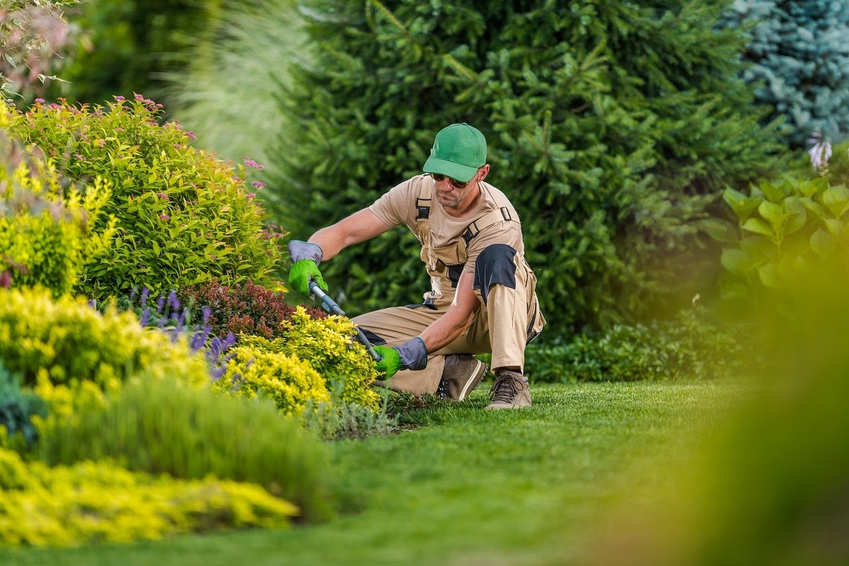 Clients keep on coming back to Earth Development for all their commercial landscape needs in Janesville because of our personal touch. We use teams of local professionals who have years of experience and are dedicated to keeping your commercial business looking fantastic all year round. Our team offers: