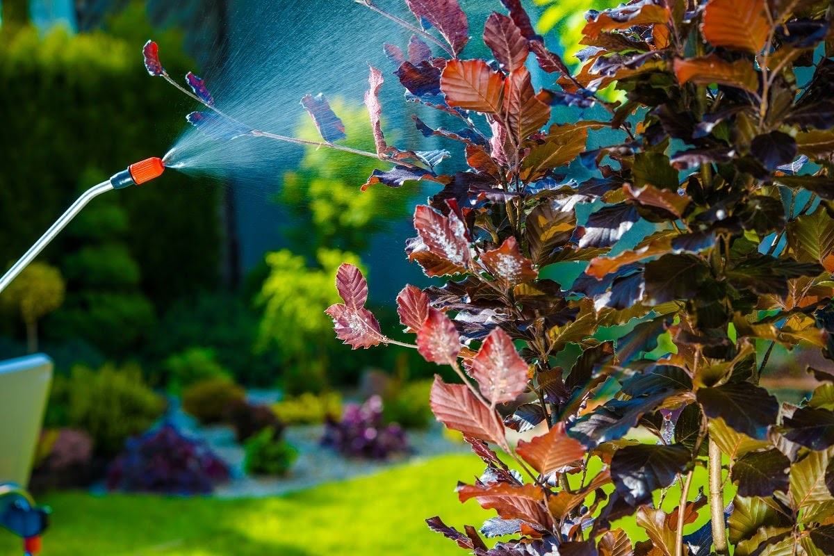 Businesses are always on the lookout for amazing deals that don't compromise on quality, which is why businesses across Delavan trust Earth Development for all their commercial landscaping needs. Our team of local and experienced professional landscapers brings you: