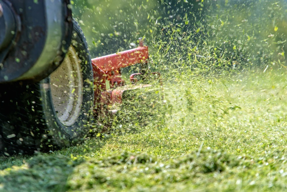 No matter your business or property type, if you need commercial landscaping services in Bowling Green, Ohio, then we've got you covered.