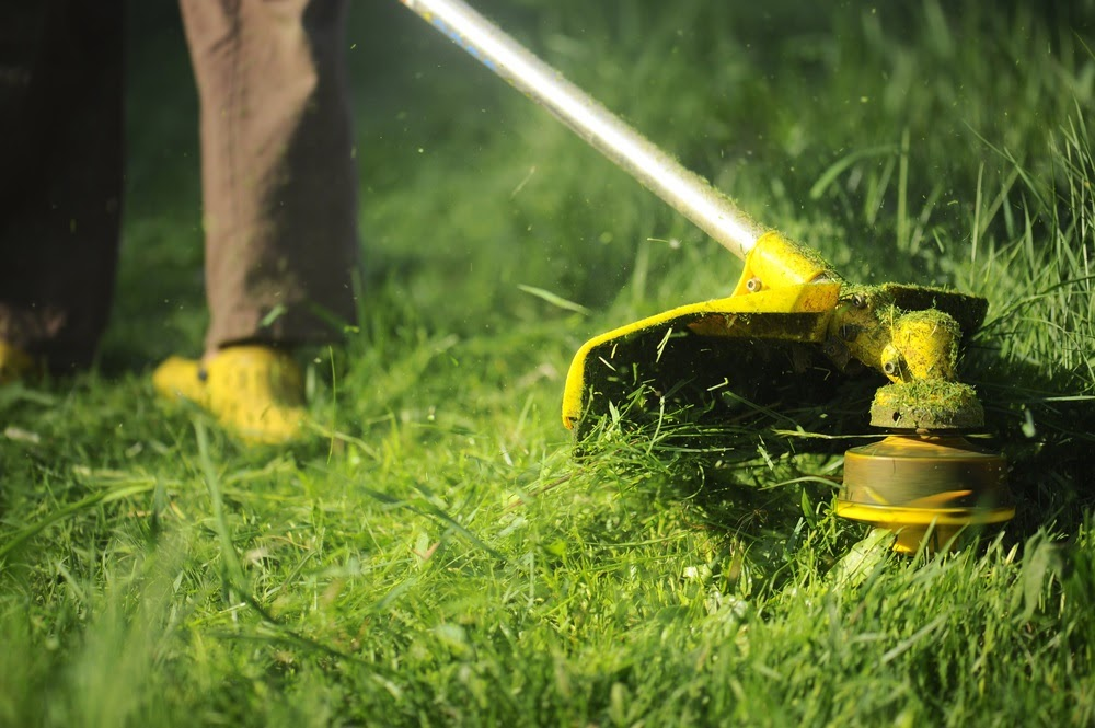 Whatever commercial landscaping service you need, we deliver