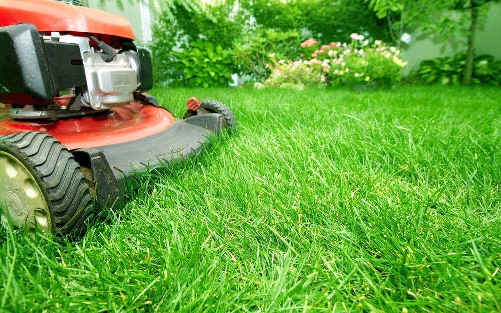 No matter the kind of business you run or the size of your property, our Fergus Falls commercial landscapers can handle everything!