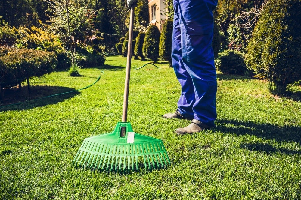 Whether you own one small business property, a chain of stores, or a large business complex, we offer wide-ranging commercial landscaping services that fit your every need.