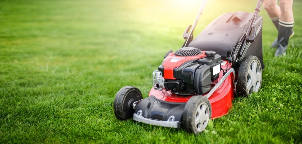 From small businesses and chains to large office complexes, we provide all the commercial landscaping services you'll ever need.