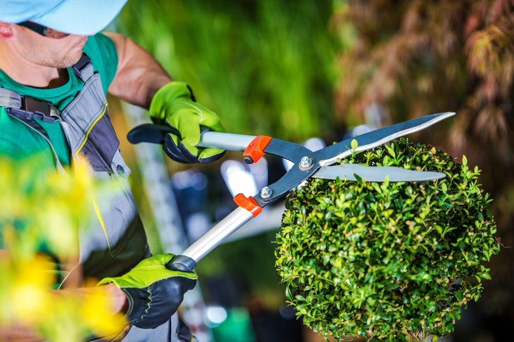 Whatever your budget or commercial landscaping needs, we're sure that our Owatonna landscaping team can help!