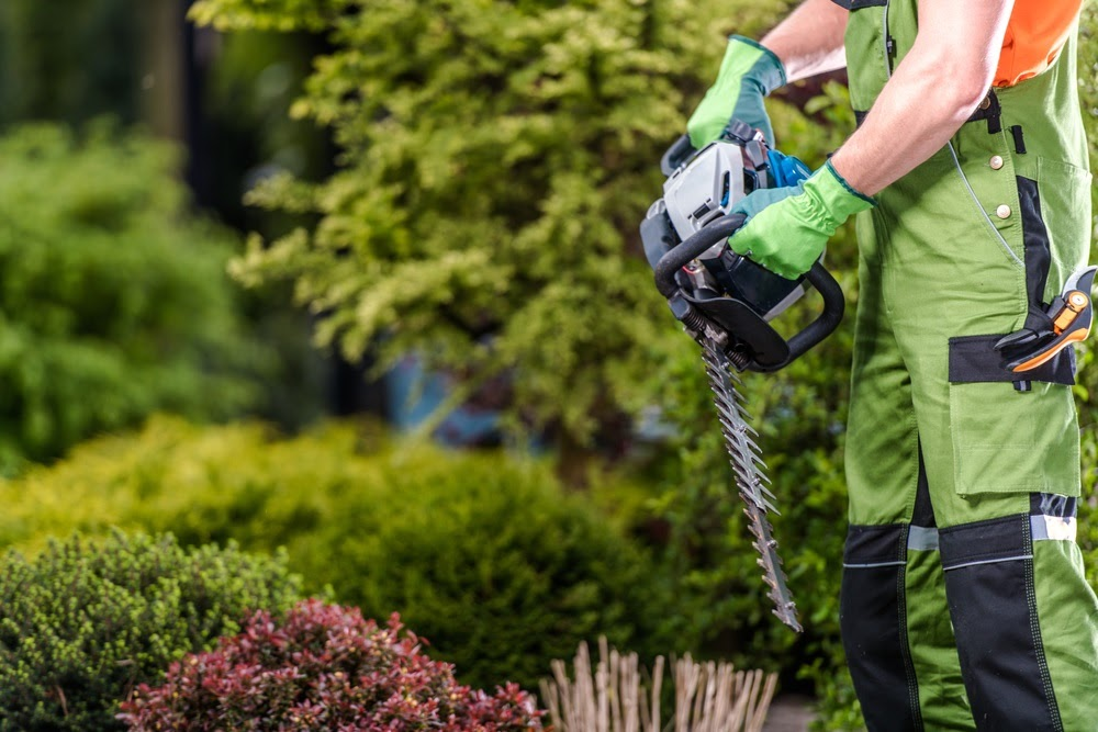 From large business complexes to small stores and chains, we provide comprehensive commercial landscaping services near Winona.