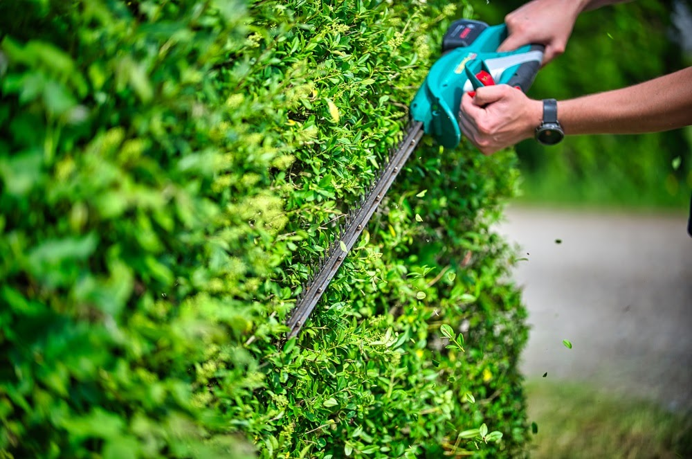 Our commercial landscaping services are varied, comprehensive, and always delivered on time…by experts!
