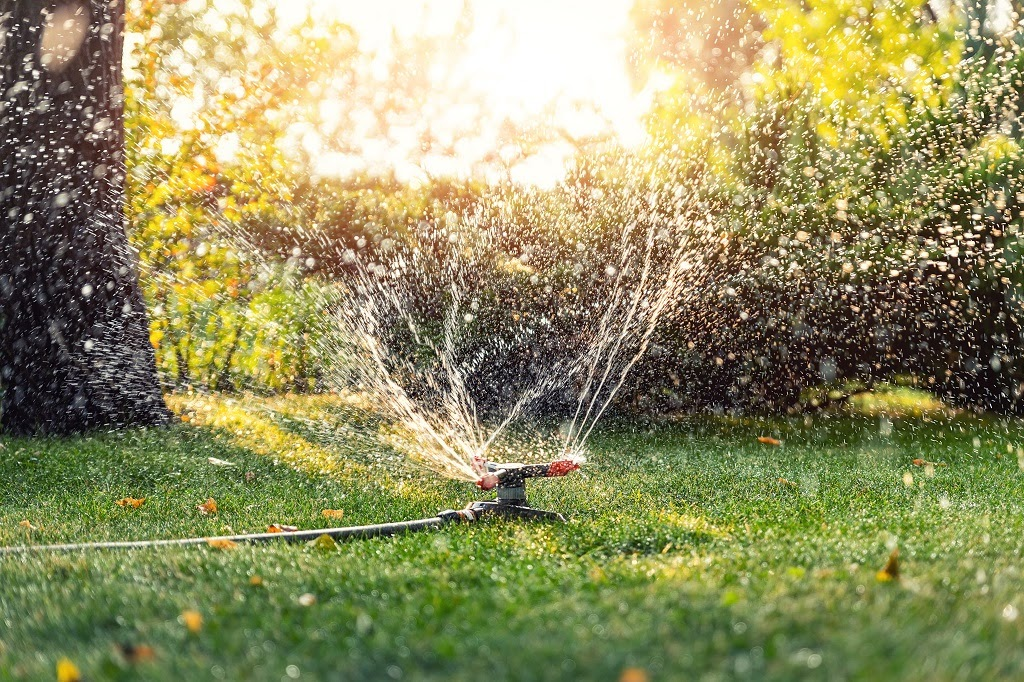 We have an impeccable eye for detail and meticulously take care of each shrub and plant. Our competitive pricing, reliable services, and world-class workmanship have made us a popular choice in Cedar Falls, Iowa.