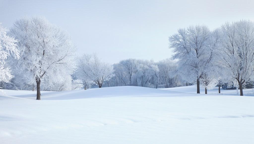 Snow Piles Minnesota Winter Facts