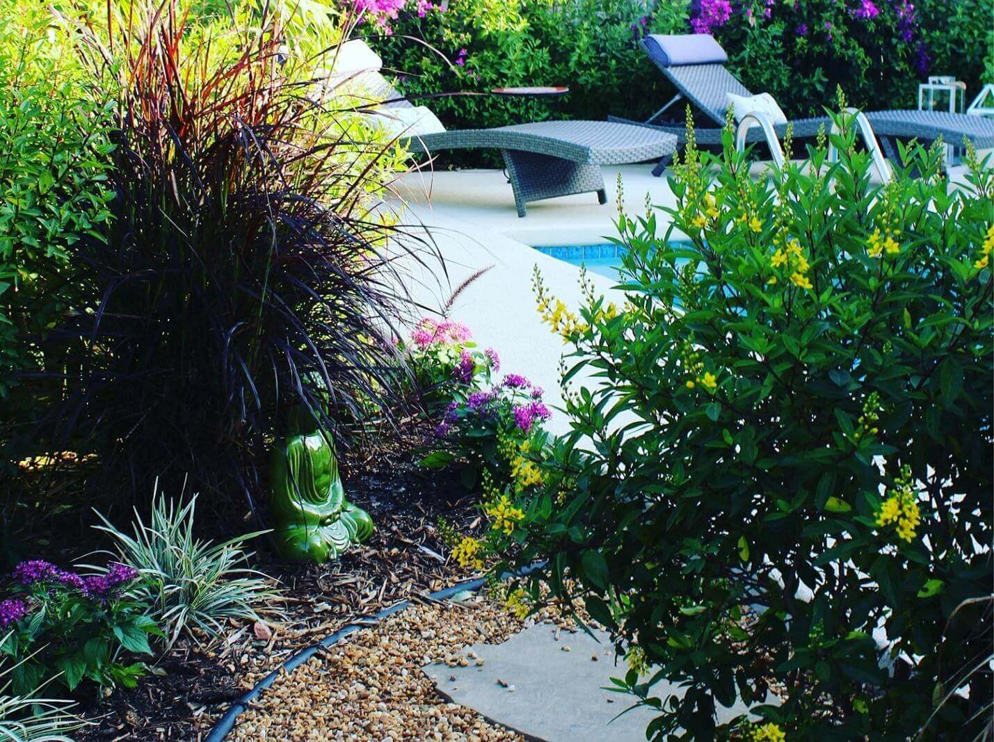 Consider Xeriscaping