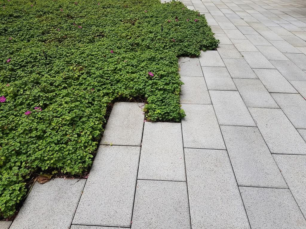 Hardscapes Commercial Property