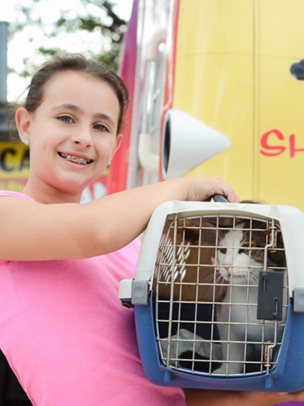 Child smiling with a cat in a crate
