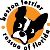 Boston Terrier Rescue of Florida logo