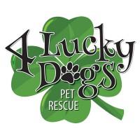 4 Lucky Dogs Pet Rescue logo