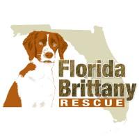 Florida Brittany Rescue logo