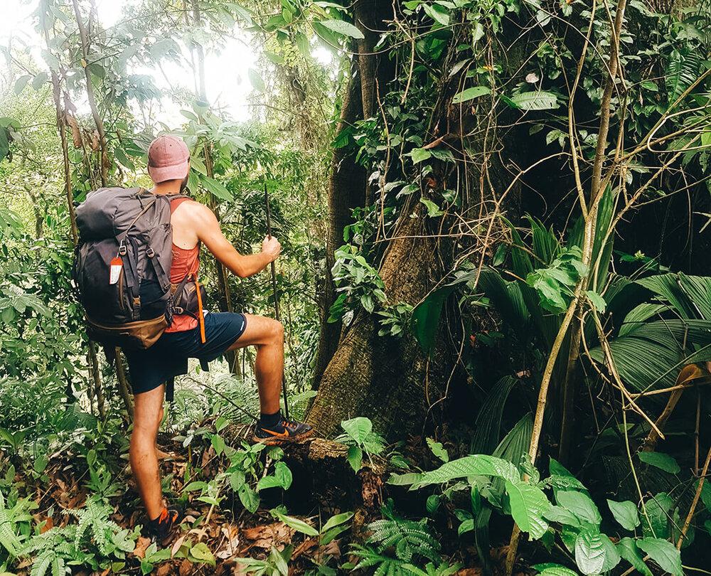 Ulysse Lubin dans la jungle