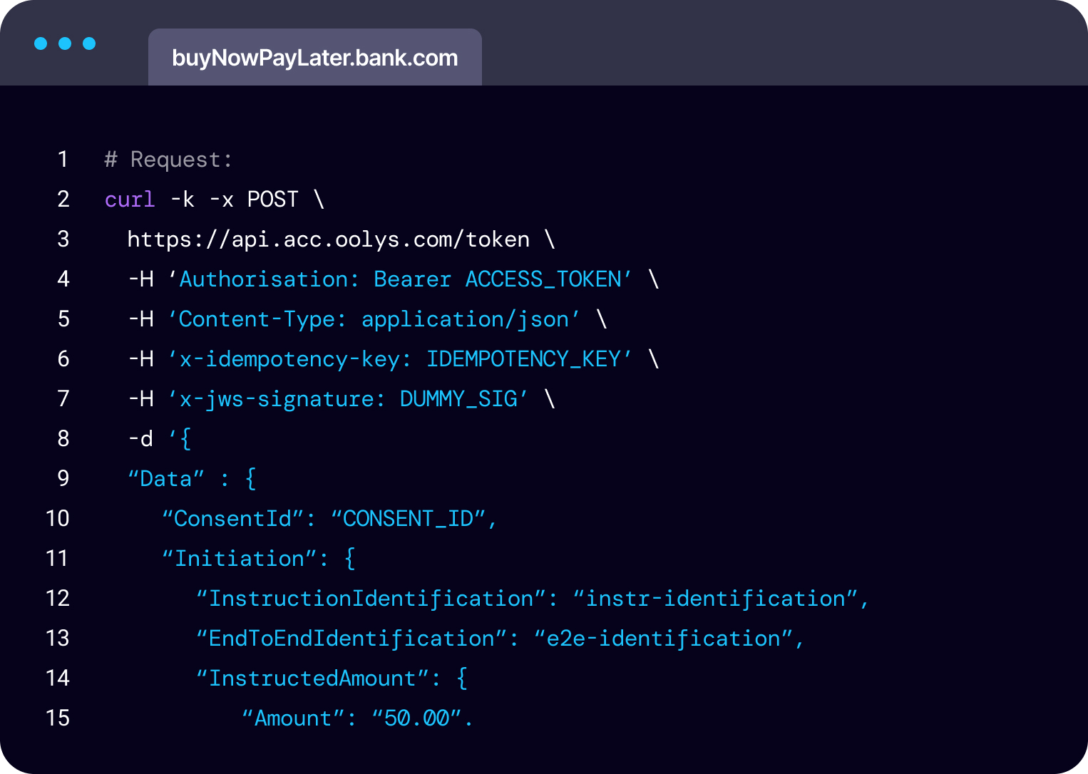 Code snippet demonstrating buy-now-pay-later requests being initiated via an API call