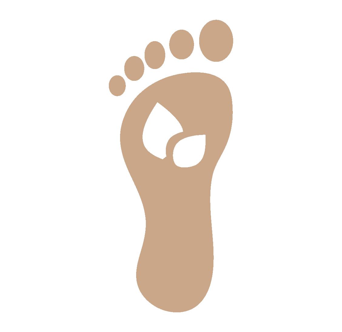 Renewable Footprint icon