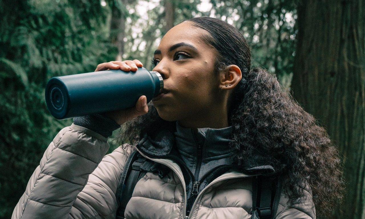 Water purifier, a travel gadget