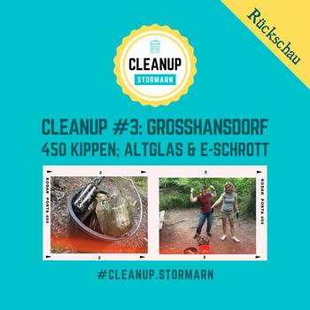 Heute haben wir rund um den Manhagenteich in Großhansdorf aufgeräumt und dabei ca. 400 Kippenstummel, etliche Plastikfolien und Altglas gesammelt.