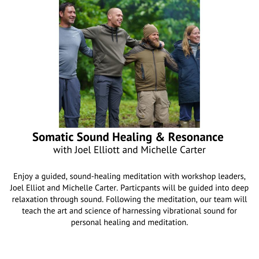 Somatic Sound Healing & Resonance with Joel Elliott and Michelle Carter.