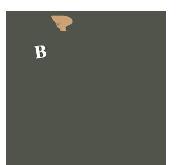 Monkey blowing a horn