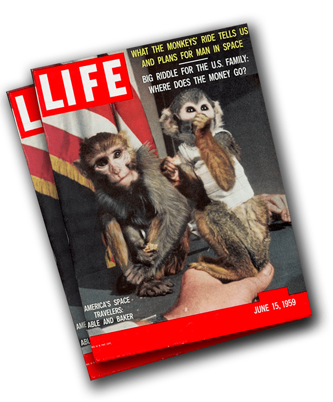 Baker and Able on the cover of Life Magazine, June 1959