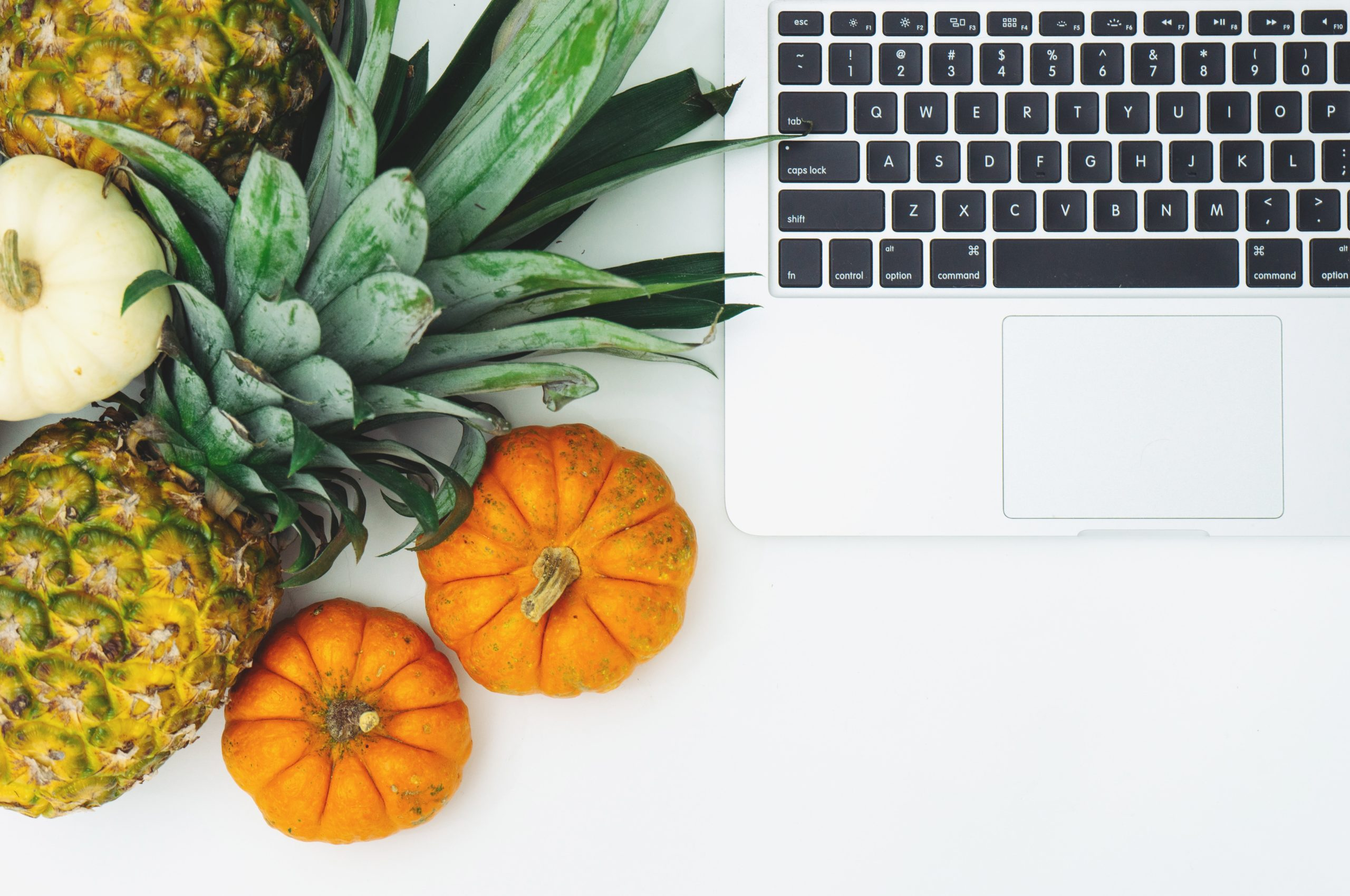 What to Know About Creating Content for Your Food and Beverage Brand