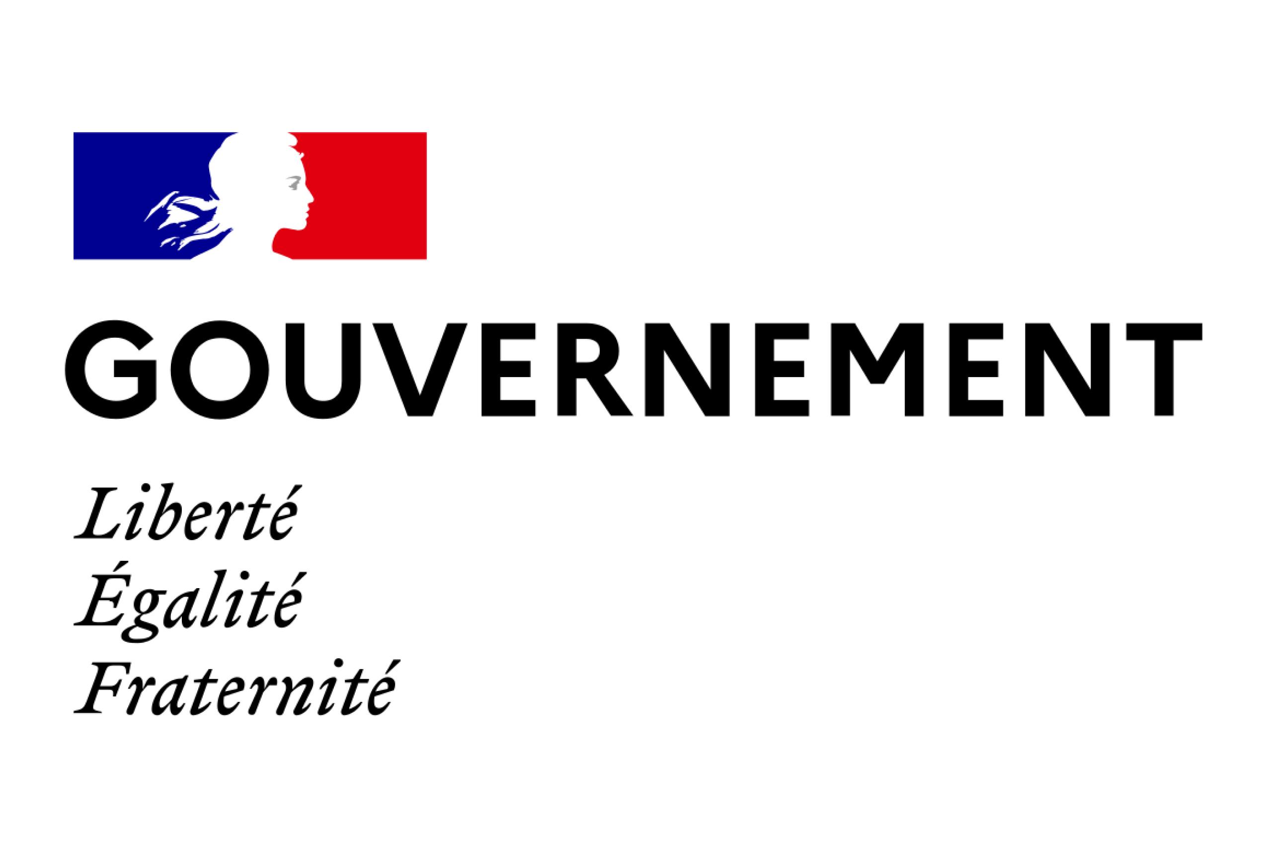Service d'Information du Gouvernement