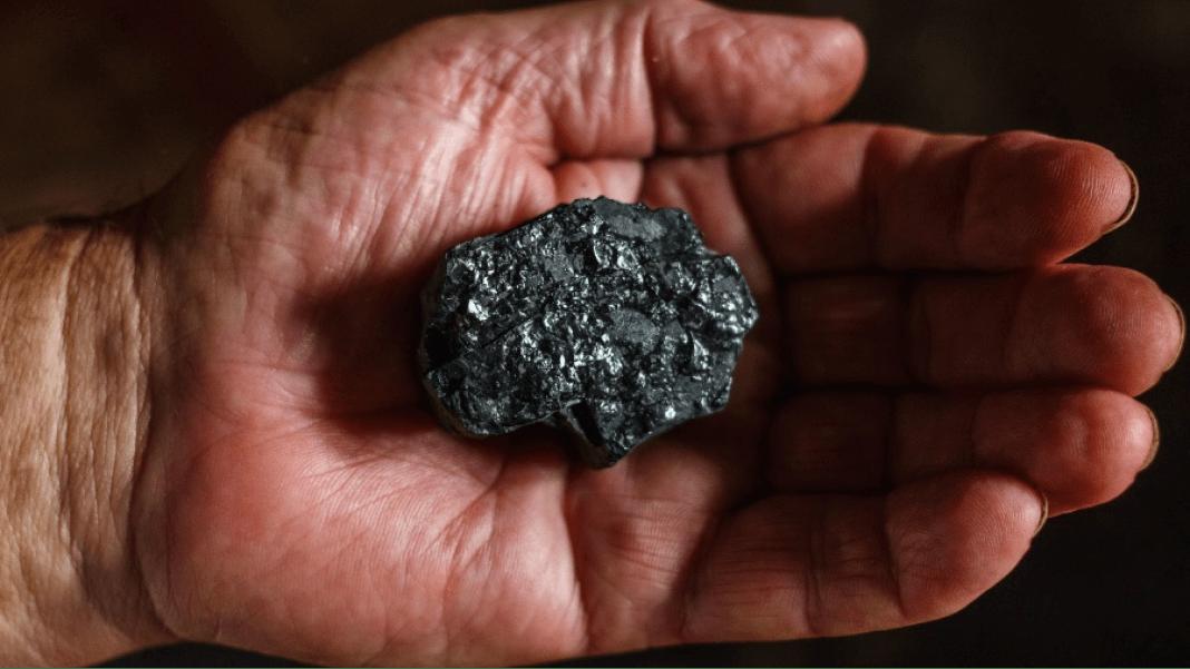 Carbon Negatives