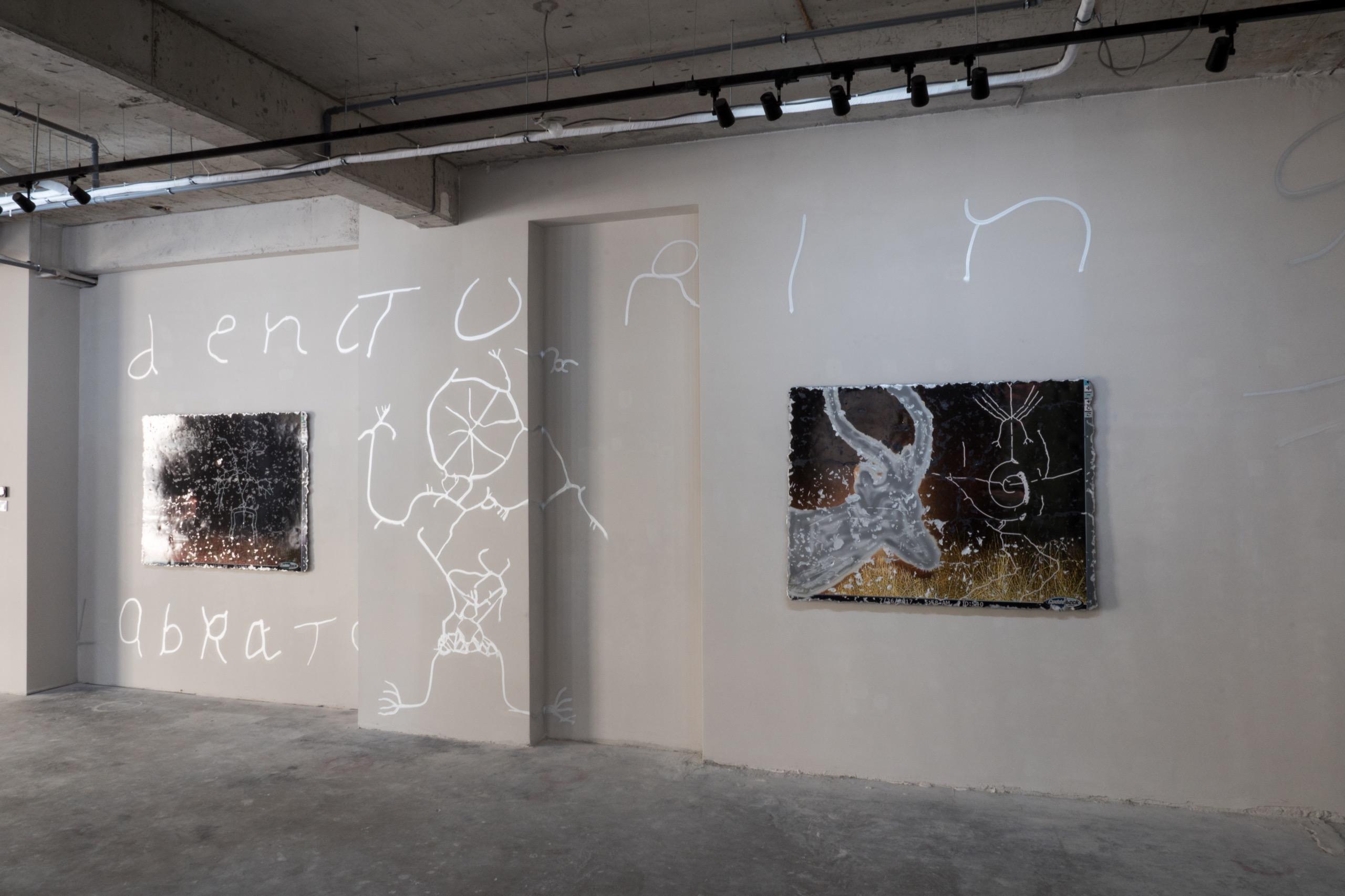 Katja Novitskova, Installation View 'Earthware'