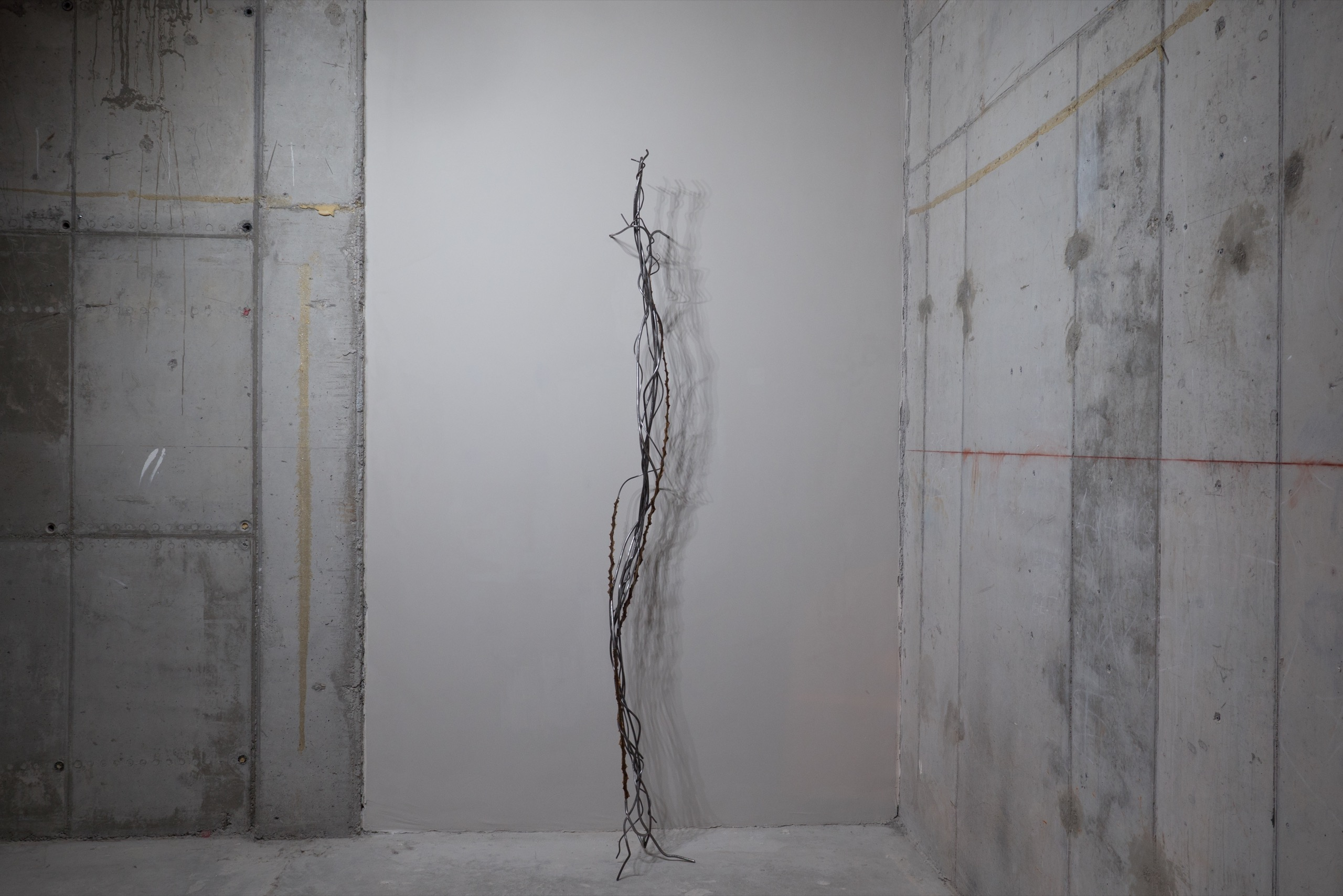 Nona Inescu, 'Intertangle I', 2021, steel, various vegetal insertions, dimensions variable