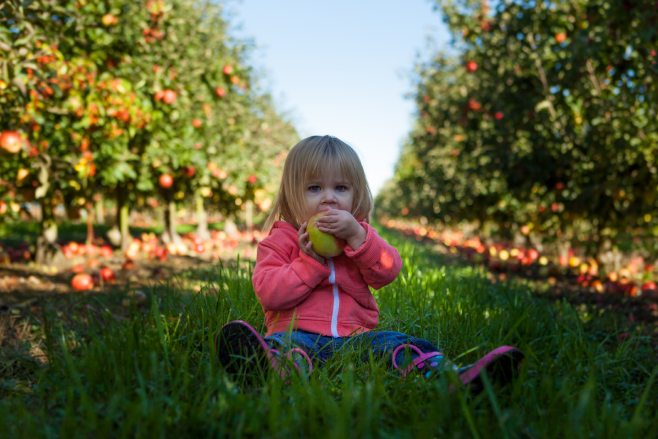 Kid sitting in grass eating an apple.