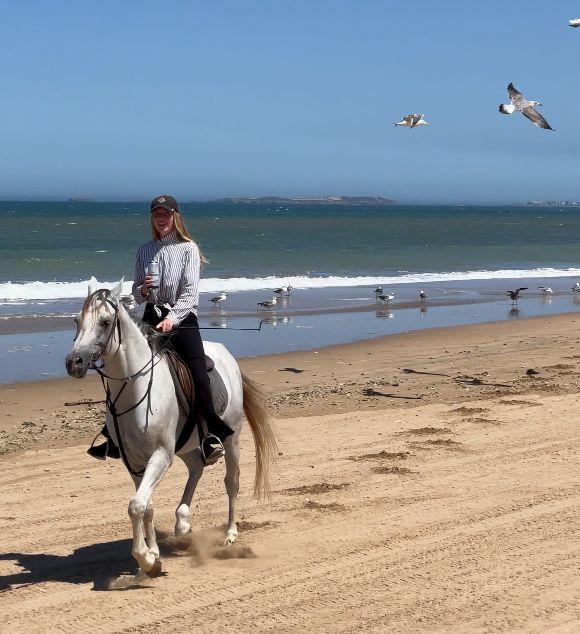 horse riding in morocco on essaouira beach